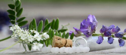 Homöopathie – Homöopathische Arzneimittel