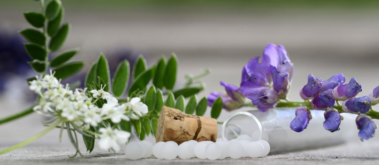 Symbolfoto zeigt Globuli mit Lavendel