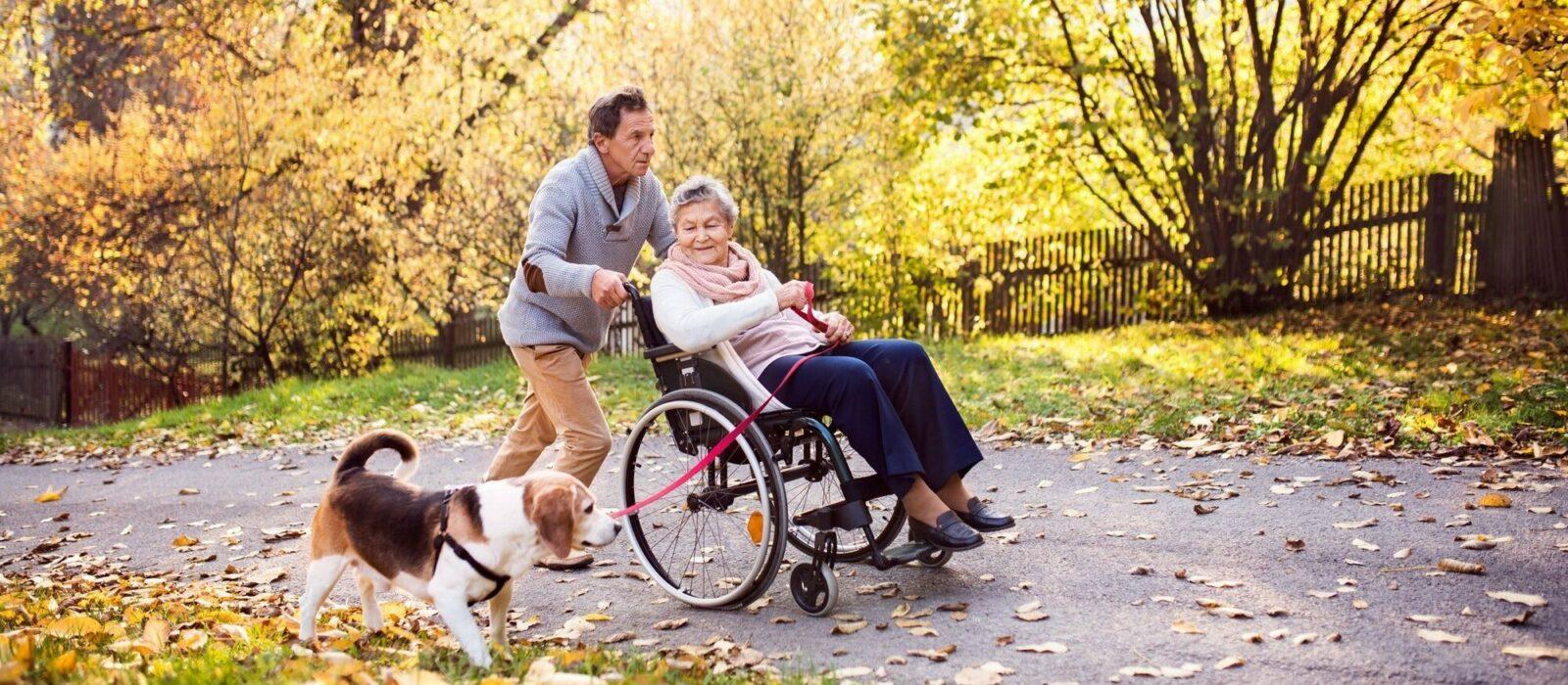 Symbolbild Heimbelieferung zeigt eine Dame im Rollstuhl, die von einem Mann mit Hund begleitet wird